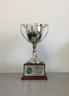 Buy Perpetual Trophies And Honour Boards Sydney Great Prices